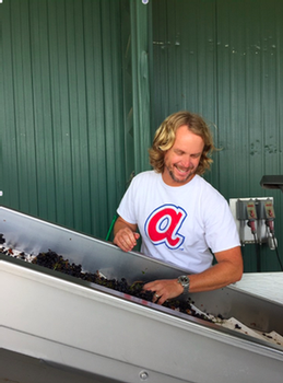 Jamey Whetstone sampling grapes from the Pleasant Hill vineyard in Russian River